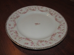 Pearl China Dinner Plate